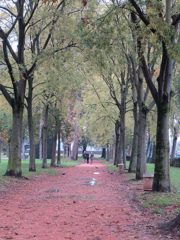 Parco di Mantova #Mantova #Mantua #arte #art #cultura #culture #Italia #Italy #evento #event #parco #park