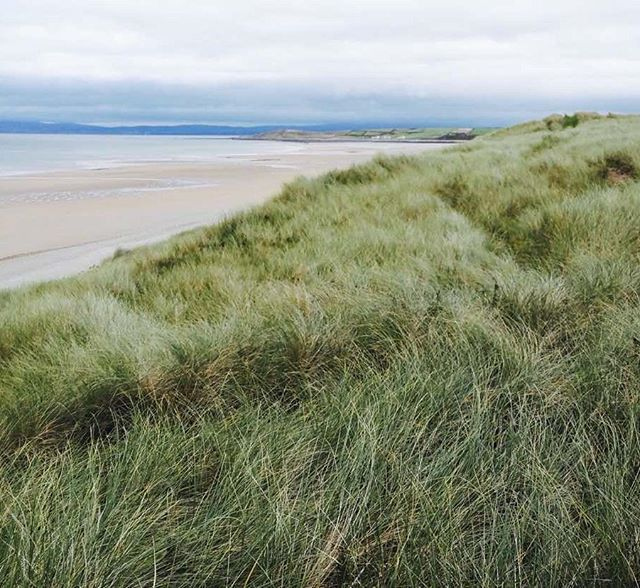 Dunes of Donegal • Ireland • • • • • • • • • #nature #NaturePhotography #Outdoors  #Backtonature #여행 #旅行 #旅行 #לִנְסוֹעַ #paglalakbay #gerrîn #perjalanan #pengembaraan #冒险 #การท่องเที่ยว #TravelGram #Travel #性质 #φύση #perjalanan #Passport  #natyrë #natuur #kalikasan #gamta #naturaleza #natureza #φύση #eðli #priroda #natuur #daba #narava #travel #tourism #travelgram #popular #trending #micefx