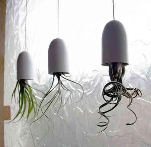 15 pingles plantes suspendues d 39 int rieur incontournables. Black Bedroom Furniture Sets. Home Design Ideas