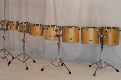 Concert Toms  TreeHouse is taking the concert stage by storm.  Design your own multiple set-up with these affordable, pro maple drums!  A TreeHouse first: each pair of drums includes a Gibraltar 7700Q stand.  Multiple set-ups made easy by accessorizing with these sturdy stands. 6x6, 7x8, 8x10, 9x12, 11x13, 12x14, 13x15, 14x16; plied maple; satin wax.