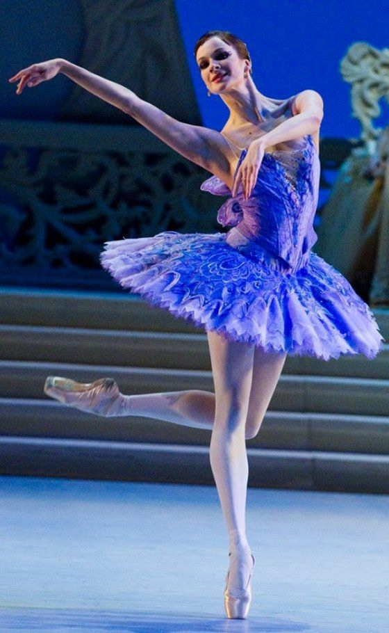 royal opera house ballet christmas 2015 pinterest