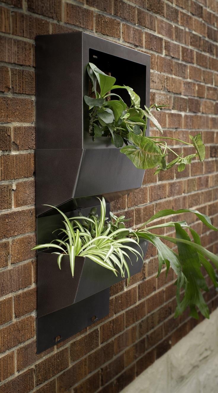 17 Best Ideas About Rectangular Planters On Pinterest