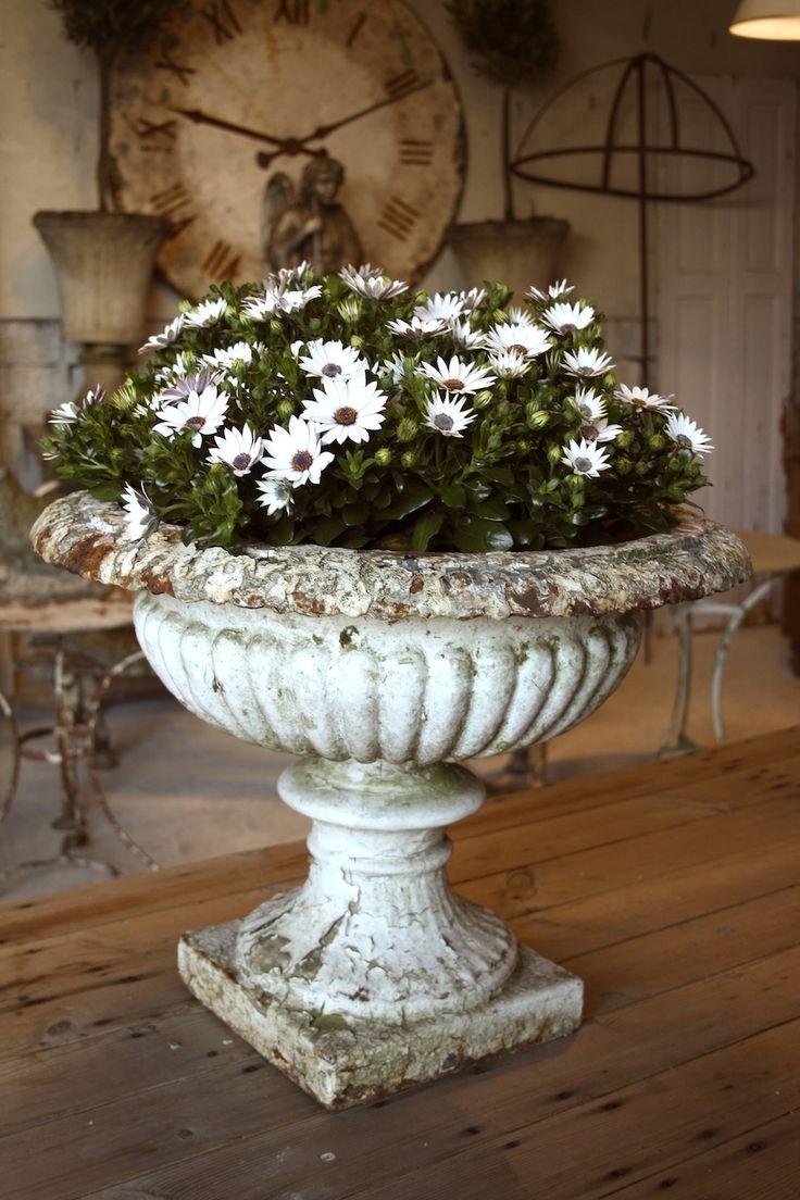 Cast Iron Urn. This Would Work In Our Antique Bird Bath. Garden UrnsGarden  PlantersFlower PlantersConcrete ...