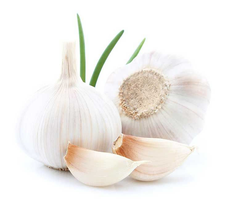 Garlic for Yeast Infection #candida #infections #yeastinfection #homeremedies #DIYhttps://ambrossimo.com/home-remedies-yeast-infection/
