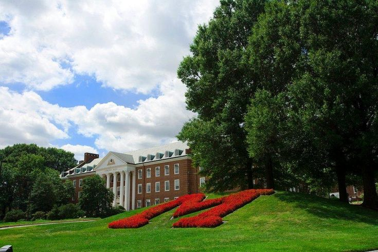 University of Maryland, College Park: ranked 14th in top public colleges.