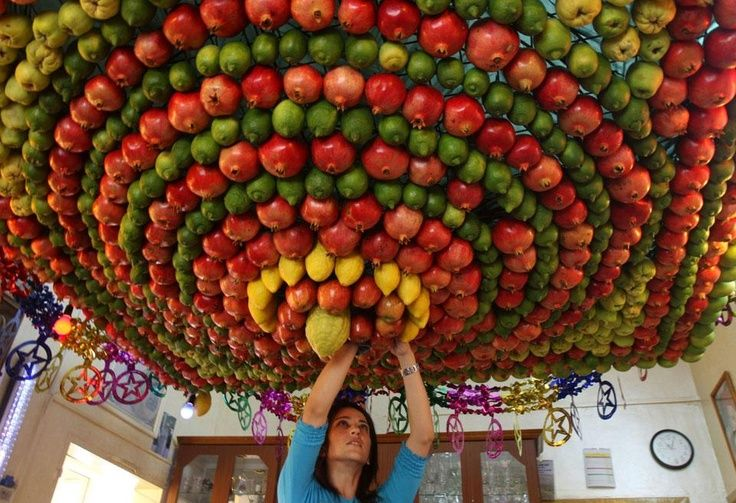 A woman from the ancient Samaritan community decorates a Sukkah made from fresh fruit for the holiday of the Tabernacles, or Sukkot, in Mount Gerizim
