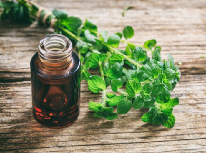 oregano oil benefits, natural antibiotic