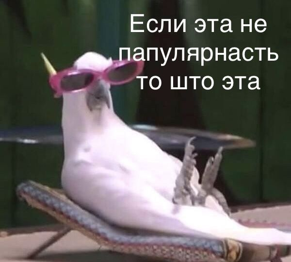 ьъе вас 1000🖤