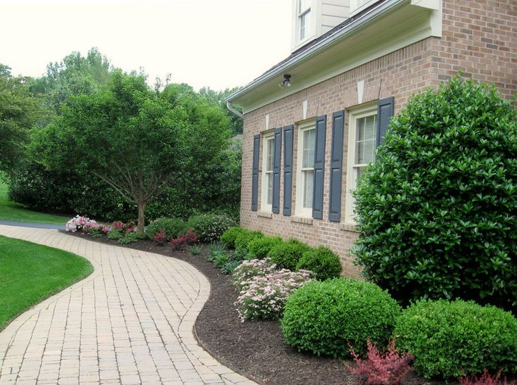 46 best foundation plantings new house images on pinterest for Plants for walkway landscaping ideas