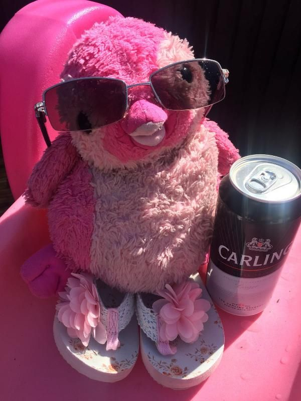 Lost on 17 Aug. 2016 @ London Waterloo Train. Very tatty (well loved) pink…
