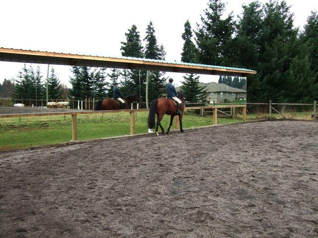 Outdoor mirrors  Dressage Arenas  Horse barns Horse stables Horse arena
