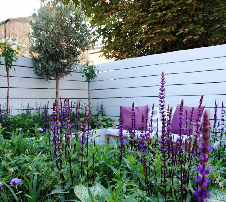 A soft mix of blues, purples, pale pinks and dots of whites features in this planting scheme. Design by Ruth Willmott.