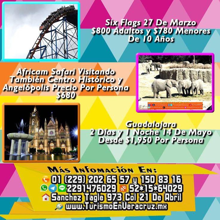 Vamos a #SixFlags #AfricamSafari y #Guadalajara Más información en http://www.turismoenveracruz.mx/promociones/