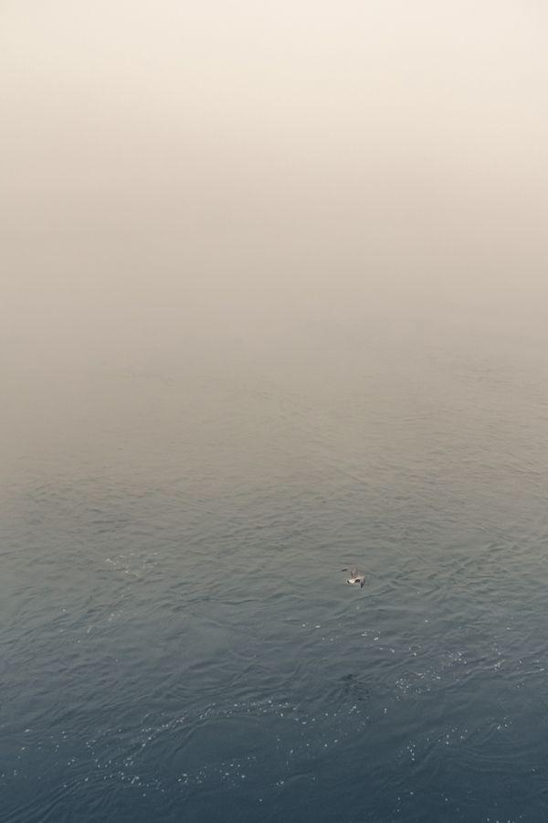 endless fog by Álvaro Martino, via Behance. El futuro...