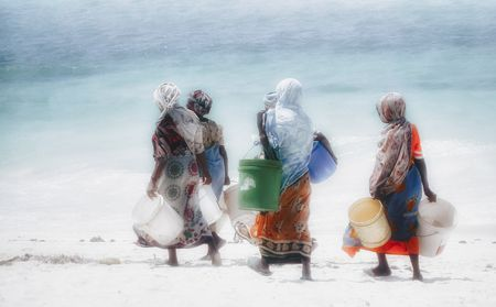 Women collecting algae. Zanzibar, Africa Photo by Nora de Angelli - www.noraphotos.com -- National Geographic Your Shot