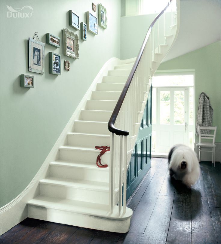 Stairway up hall Green draws in our natural surroundings and evokes feelings of pure serenity. This colour can be both calm and exciting, a really dynamic mix. Featuring Putting Green, Apple White and Willow Tree by Dulux.