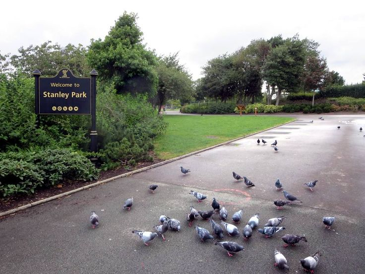 Stanley Park (1870) in Liverpool, England, is named for Lord Stanley of Preston, Governor General of Canada from 1888 to 1893 and donor of the Stanley Cup. In 1911 my great grandmother Mary Elizabeth Stanley lived nearby at 10 City Road.