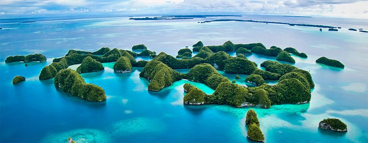 Best dive operator in Palau ~ Sam's Tours Dive Center