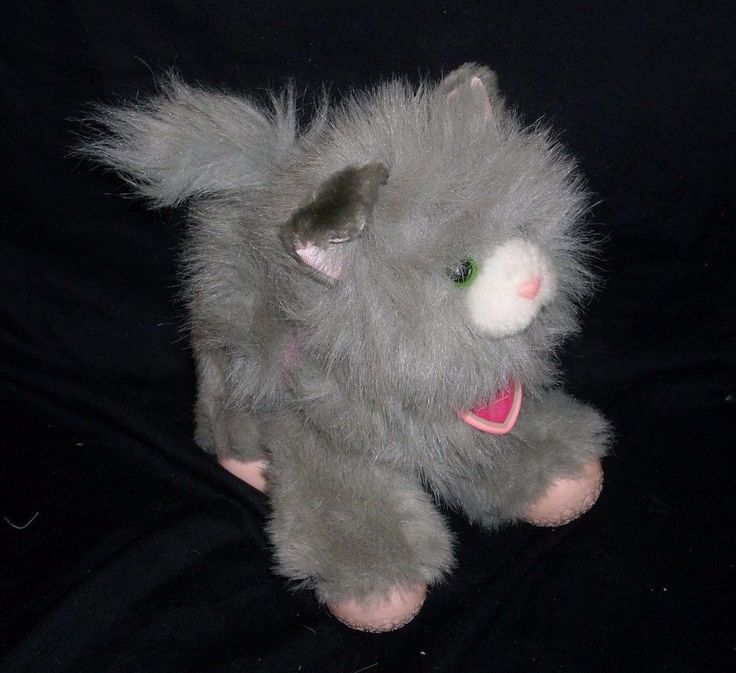 Tuggles Toy Cat
