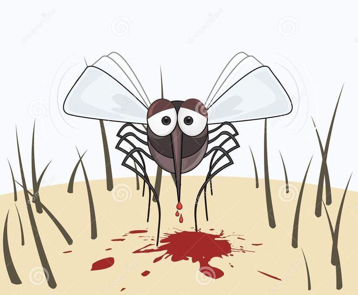 """Komáre nachádzajú svoje obete tým, že cítia teplo a oxid uhličitý, ktoré cicavce vylučujú. Tehotné ženy a objemnejší ľudia sú niekedy obeťami početnejších útokov, pretože vyvíjajú viac energie ako priemerný človek. Komáre navádza aj ich čuch. """"Napriek tomu, čo mi tvrdila moja babička, nemám sladkú"""