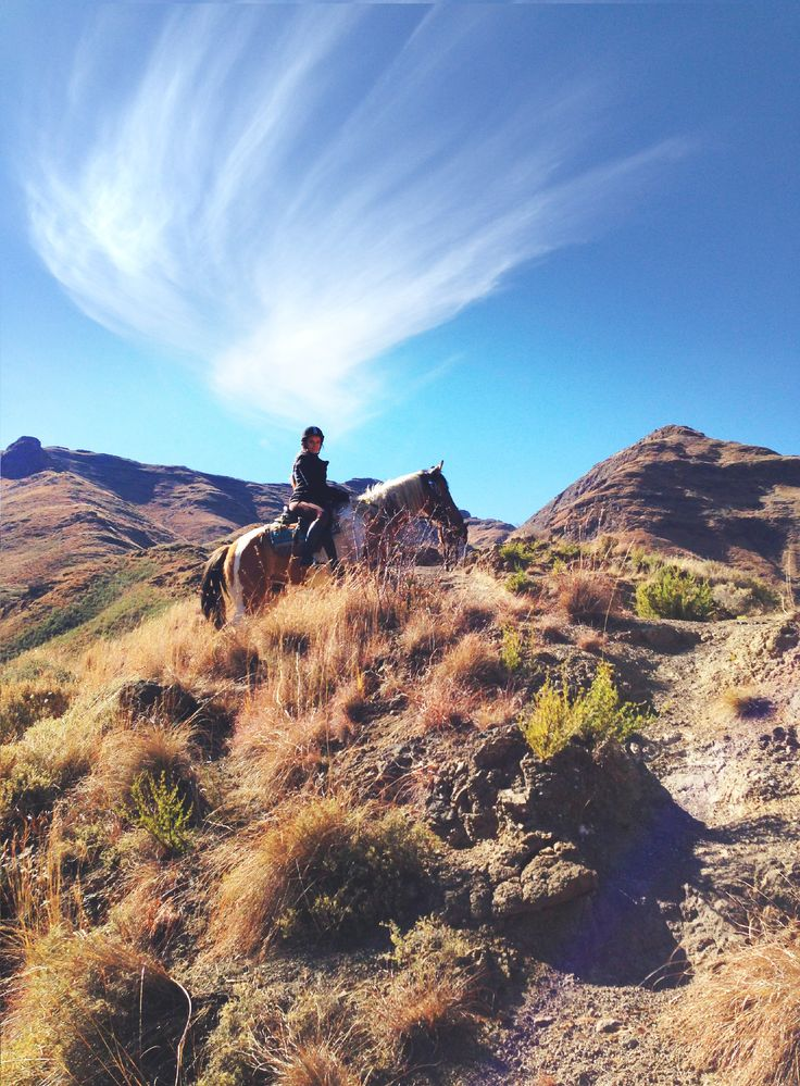 Horse trails in the Maluti mountains #malibalodge #ponytrekking #lesotho #breathtaking