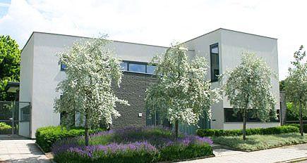 Moderne tuinarchitectuur