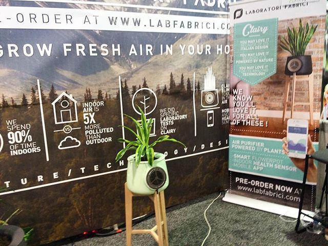 Des italiens ont créés un système qui permet de purifier l'air à l'aide d'une plante et de son pot connecté #CES2016 #eurekapark #labfabrici