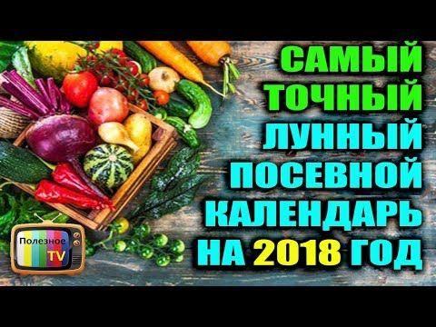 САМЫЙ ТОЧНЫЙ ПОСЕВНОЙ КАЛЕНДАРЬ НА 2018 ГОД - YouTube