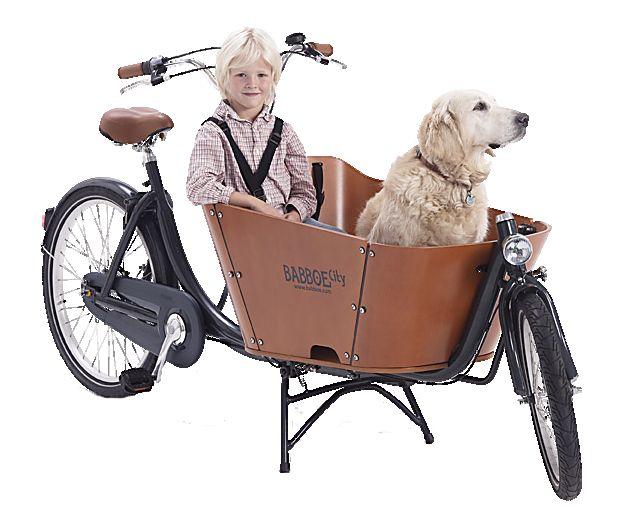 Babboe Cargobike.
