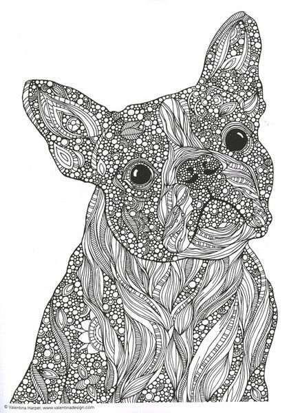 French bulldog suncatcher see more creative coloring animals adult coloring book inject a little whimsy into your daily grind