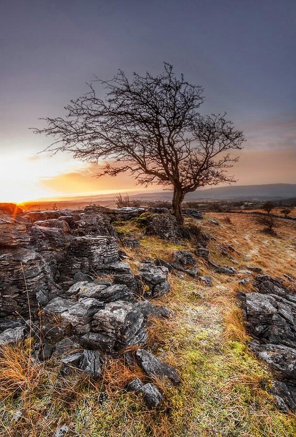 Neath, South Wales UK - Geoffrey Baker