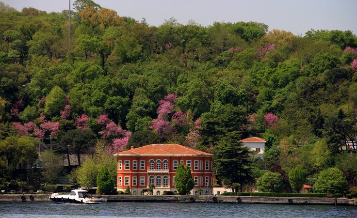 A Yali on Bosphorus in between Judas Trees, Istanbul, Turkey