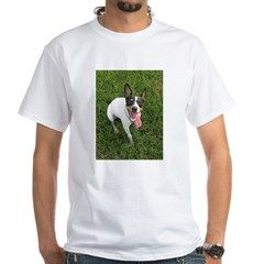 rat terrier sitting T-Shirt