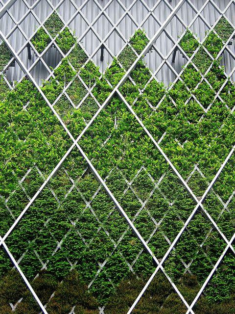 ♂ Green Vertical Garden modern architecture