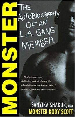 great book if you work with at risk youth or just want a good read