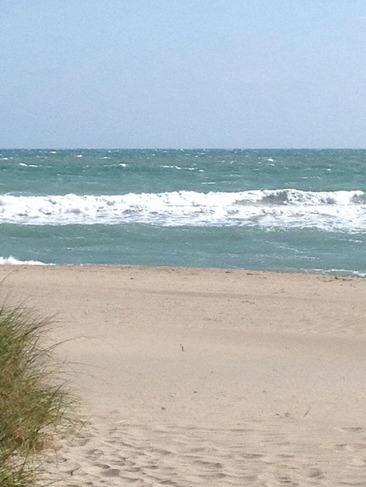 best seo services in jensen beach