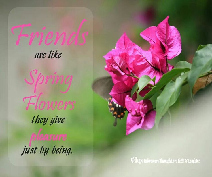 spring friendship quotes