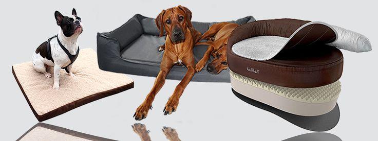 » 10 gesunde orthopädische Hundebetten 2017
