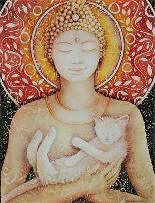 buddha and cat♡☯