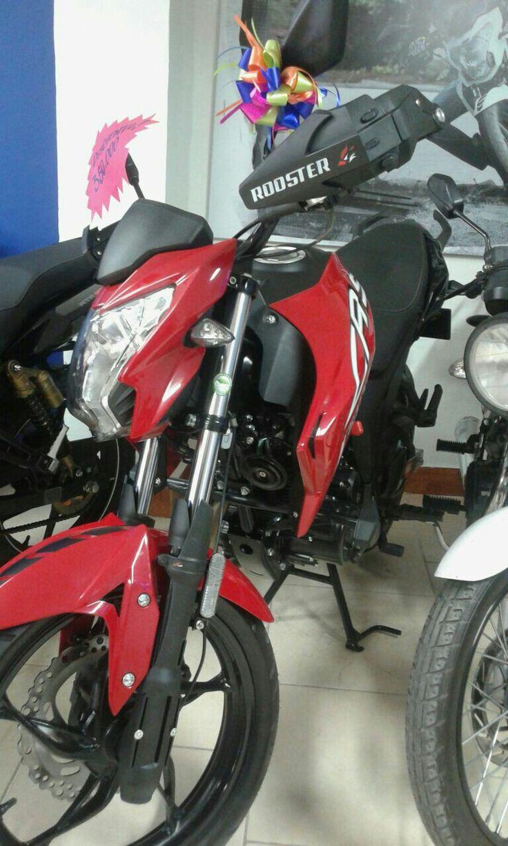 Asi Lucen nuestros Accesorios en su Bella MotoCicleta  Hand Savers-Protectores de Barras