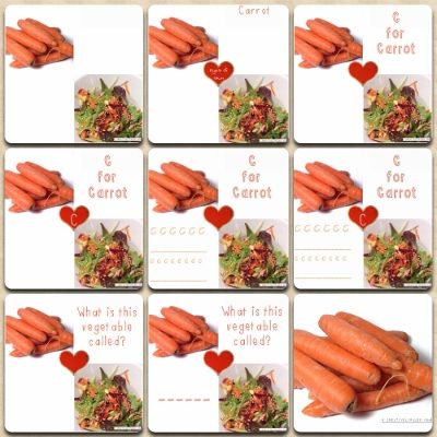 We've created a collection of printable carrot nutrition charts to be used as worksheets or to stick in a food journal, whatever takes your fancy! www.creativelypaleo.com