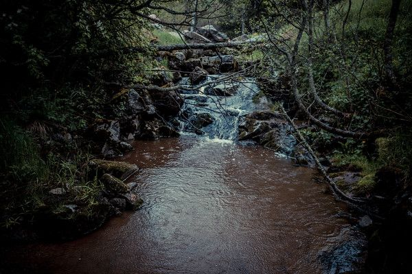Tää on kaunis kohta, oletkos käynyt?  http://www.salonsydan.fi/Salo/vesistoalueet/sahan-kyla-halikonjoki/ #Salo #VisitSalo #VisitFinland #Nähtävyydet #Sightseeing #Matkailu #Retkeily #Seikkailu #Adventure #VisitSalo #Loma #Pyöräily #Ulkoilu #natureaddict  #Awesomeearth #Canon #Canoneos6D #nakedplanet #travelawesome #earthpix #Wonderful_places  #welcometonature #fantastic_earth #discoverearth