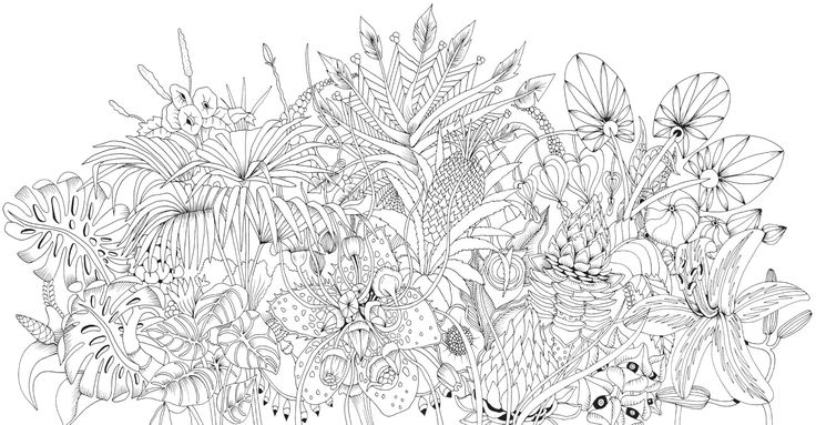 johanna basford coloring book dover coloring pages