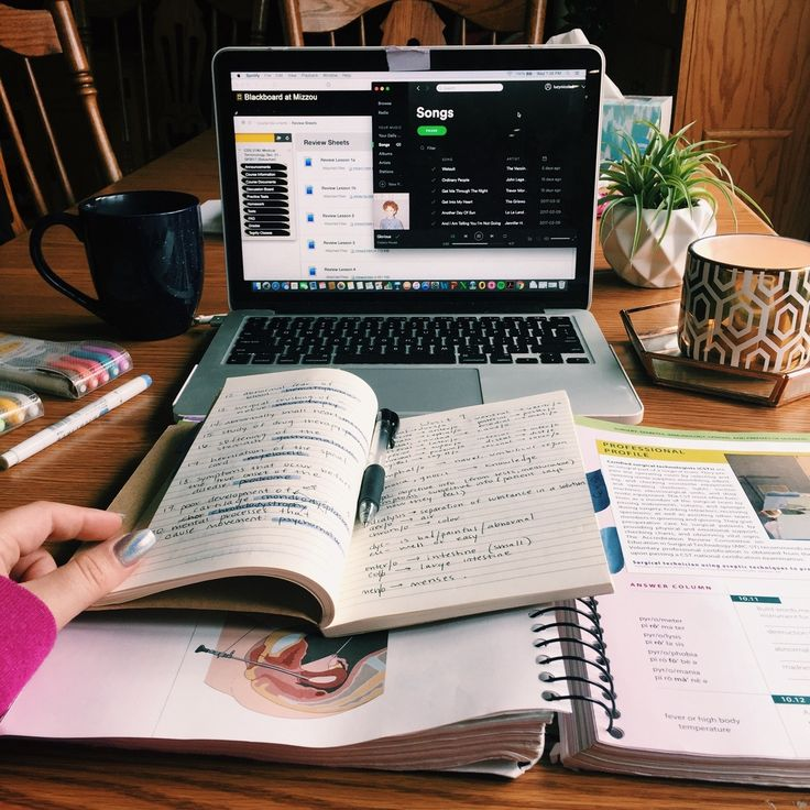 tanya's studyblr — sophrosyne-812:  4.7.17 // 5:33 pm •• when you...
