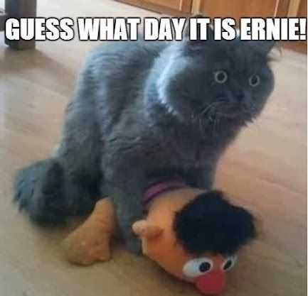 and i thought the hump day jokes were getting old......LMAO... To My Luvie Ernie... haha Happy Wednesday ~1/20/2016~