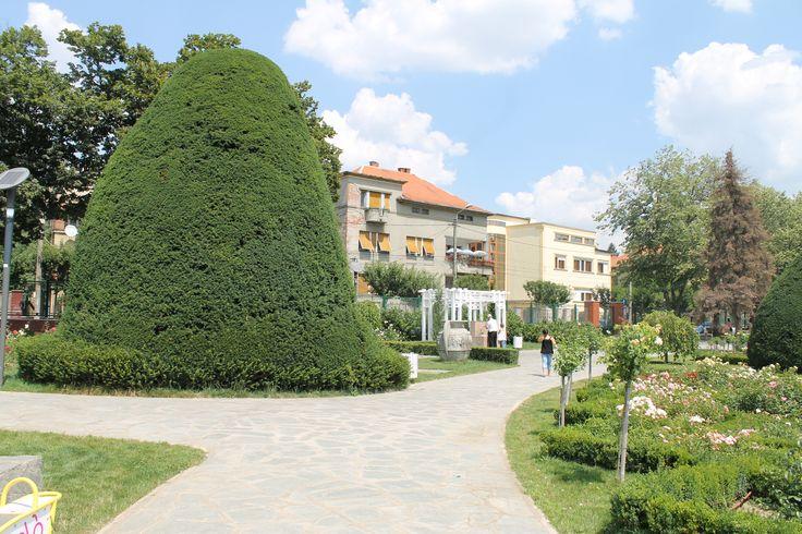 Roses Park Timisoara