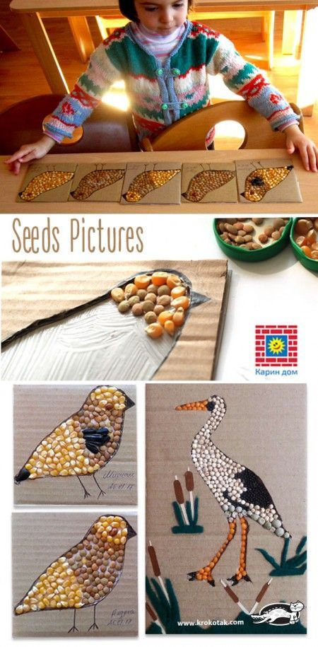 These are birds made of seeds (lentil, corn, and sunflower). They are made by the kids that visit...