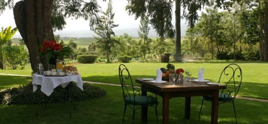 Ngorongoro Farm House expanse of lawn