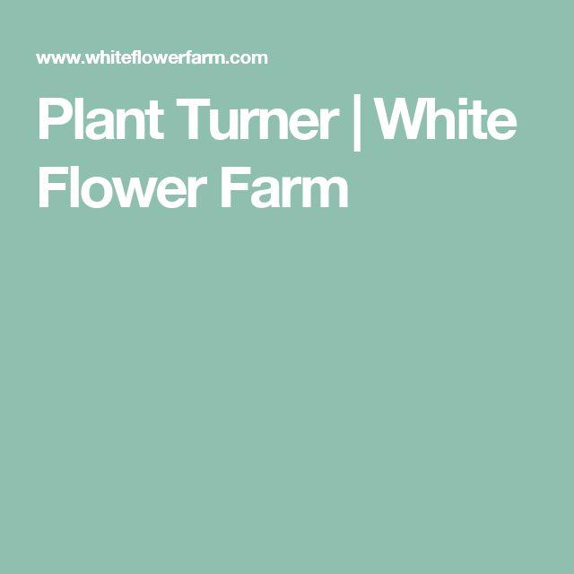 Plant Turner | White Flower Farm