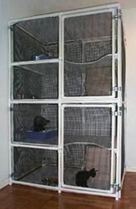 Indoor Kitty? Kennel play area